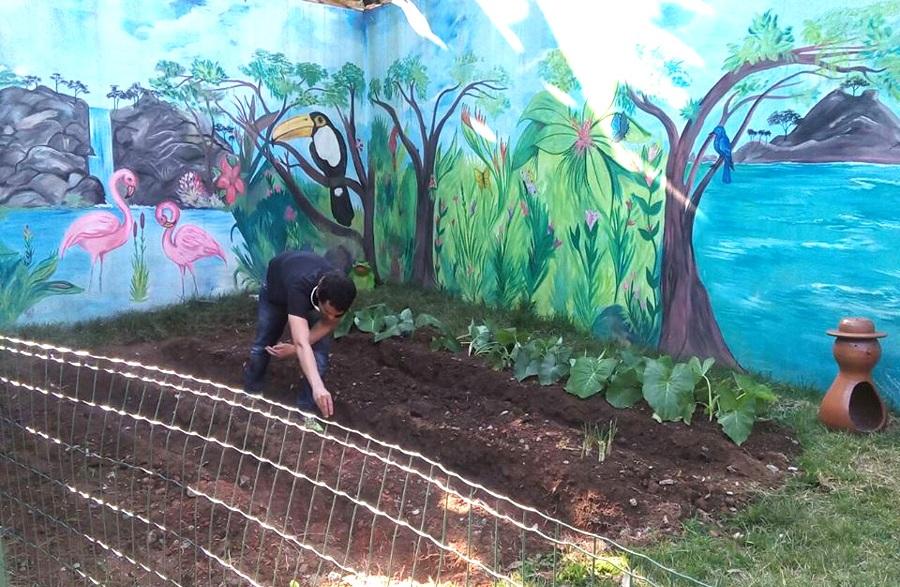 Tutmés Ronzani, aluno do curso de Gestão Ambiental das Faculdades Integradas Vianna Júnior, desenvolveu um projeto socioambiental, que se baseia na criação de hortas em colégios da cidade.